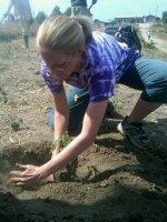 claudia planting